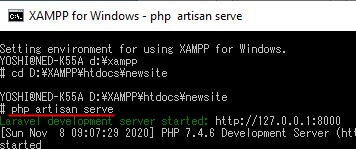 php artisan serve