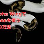 Conoha WingでPythonを使う方法。